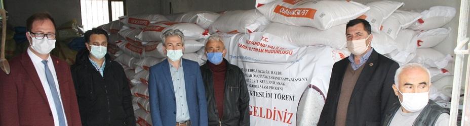Hanönü'de 15 ton çeltik tohumu dağıtıldı