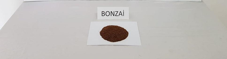 150 gram bonzai ele geçirildi