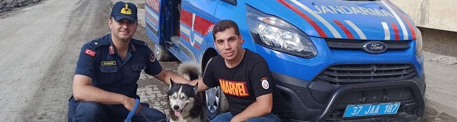 Sel kurbanı öğretmenin köpeğini jandarma sahiplendi