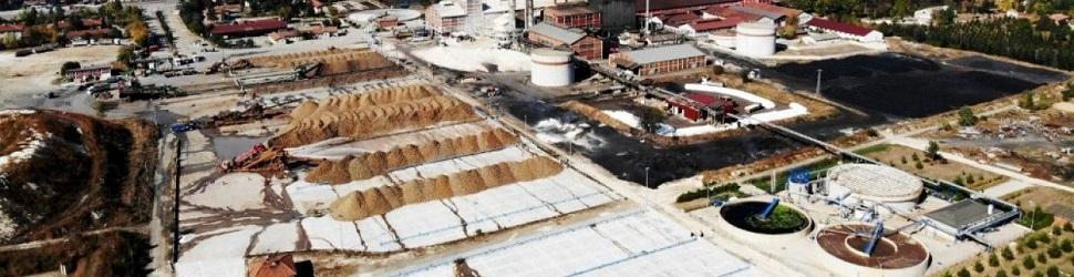 50 bin tonunu Kastamonu işleyecek